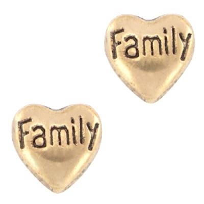 Family - 8 mm
